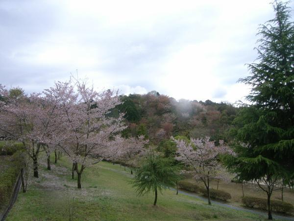 憩いの森公園 image