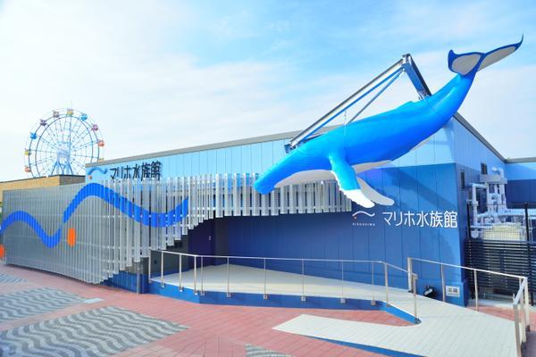 マリホ水族館 image