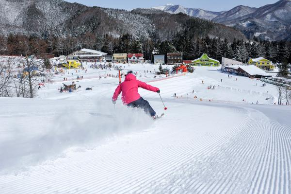 かたしな高原スキー場 image