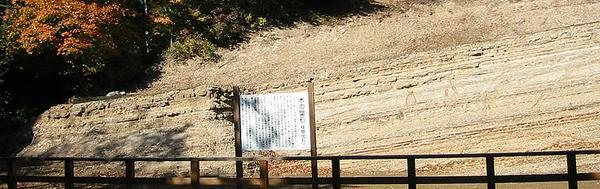 木の葉化石園 image