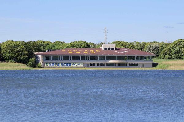 谷津干潟自然観察センター image