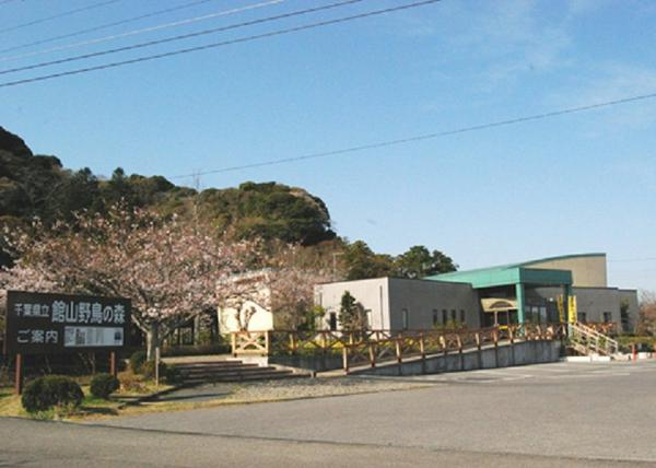 千葉県立館山野鳥の森 image