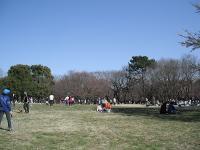 千葉県立柏の葉公園 image