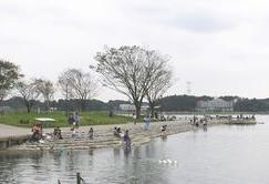 手賀沼公園 image
