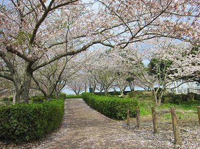 袖ケ浦公園 image