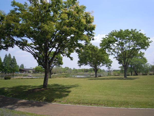 สวนฮังยูซุยโง image