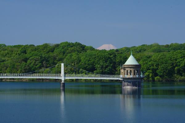 ทะเลสาบซายามะ (อ่างเก็บน้ำยามางุจิ) image