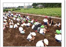 いもほりの荒幡農園 image