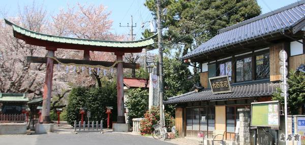 ศาลเจ้าวาชิโนะมิยะ image