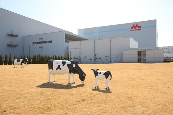 森永乳業株式会社 神戸工場(見学) image