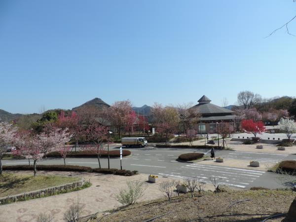 有馬富士公園 image