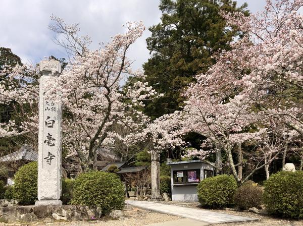 白毫寺 image