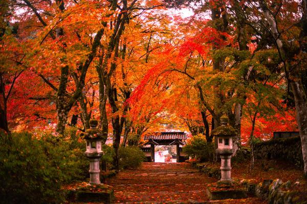 高源寺 image