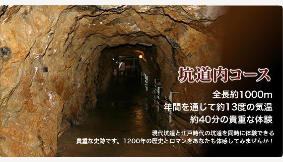 史跡・生野銀山と生野鉱物館 image