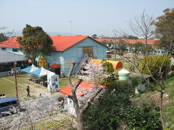 淡路岛牧场 image