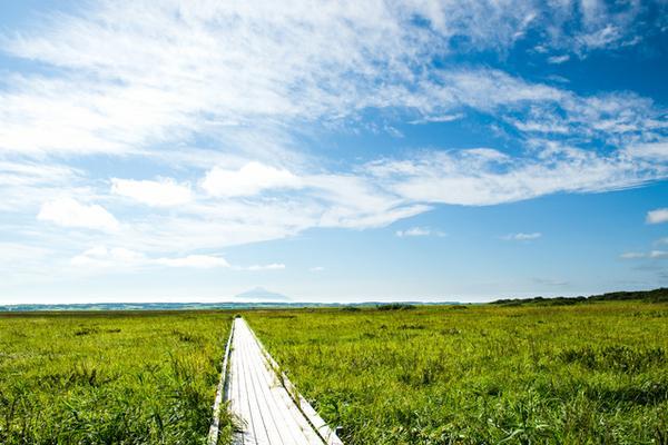 サロベツ湿原 image
