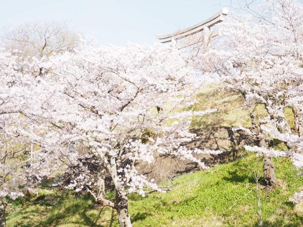 Hiyoriyama Park image