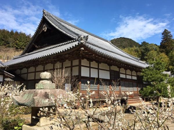 洞春寺 image