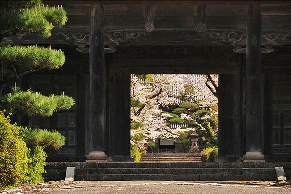 黄檗宗 護国山 東光寺 image