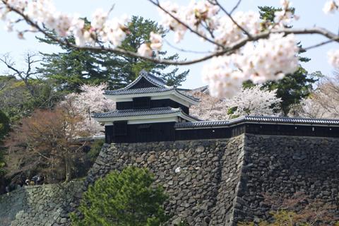 松江城山公園 image