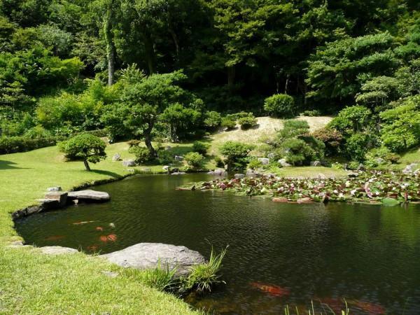 観音院庭園 image
