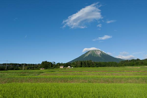 Mt. Daisen image