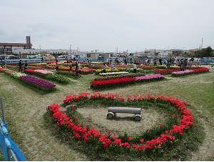北島チューリップ公園 image