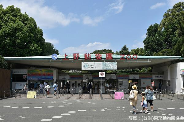 上野動物園 image