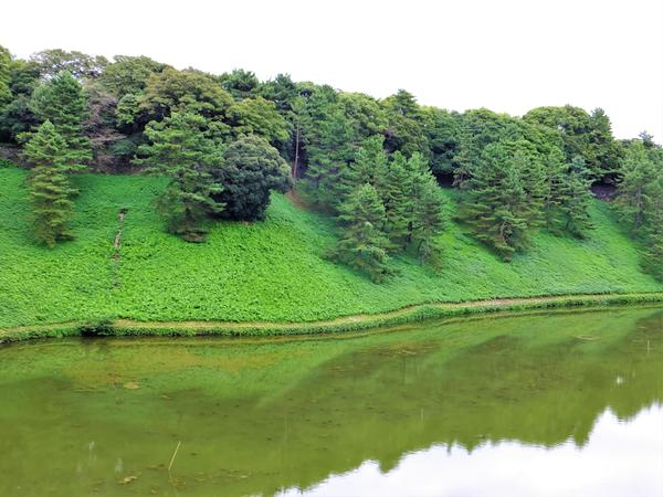 皇居外苑 image