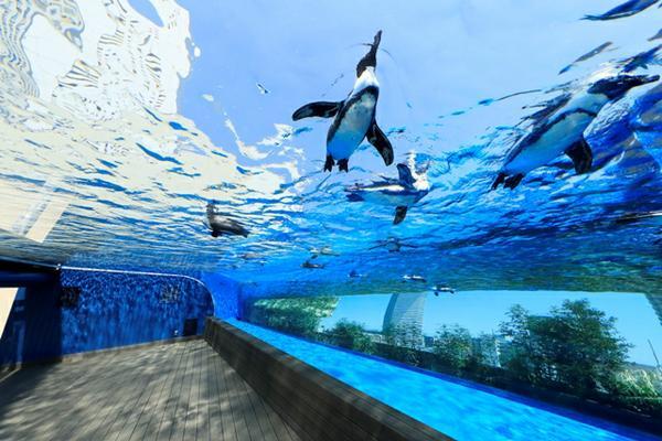 サンシャイン水族館 image