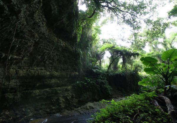 Gangala山谷 image