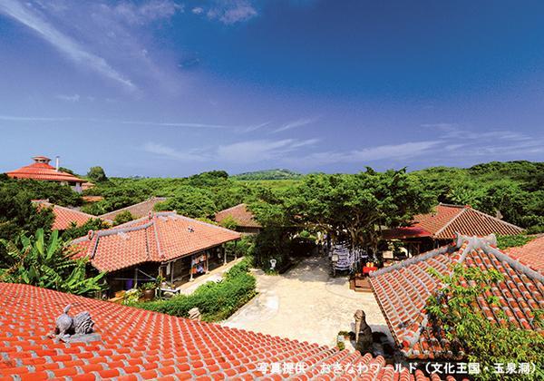 沖繩世界(文化王國、玉泉洞) image