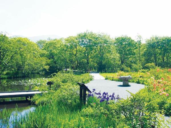 箱根湿生花園 image