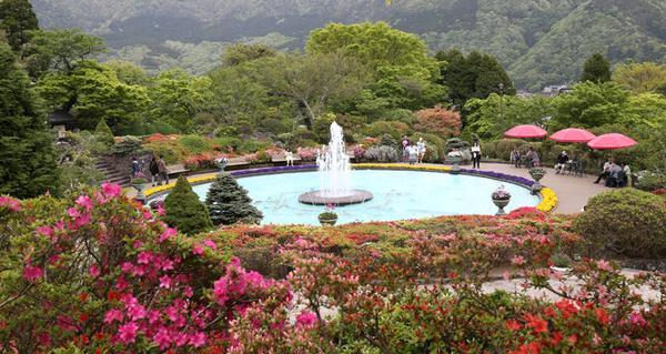 箱根強羅公園 image