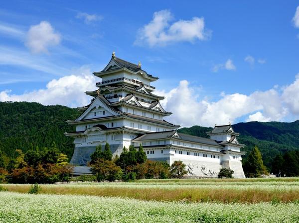 勝山城博物館 image