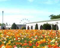 Roadside Station Kobe Fruit & Flower Park Ozo image2