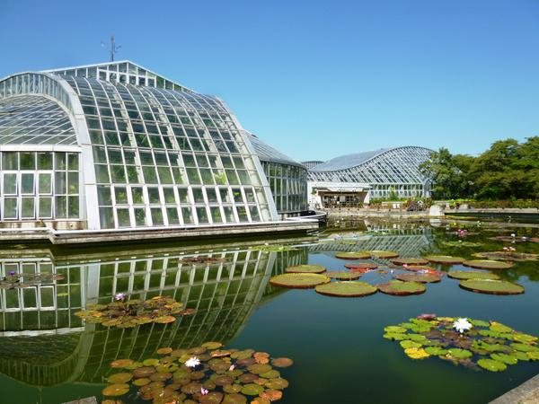 京都府立植物園 image