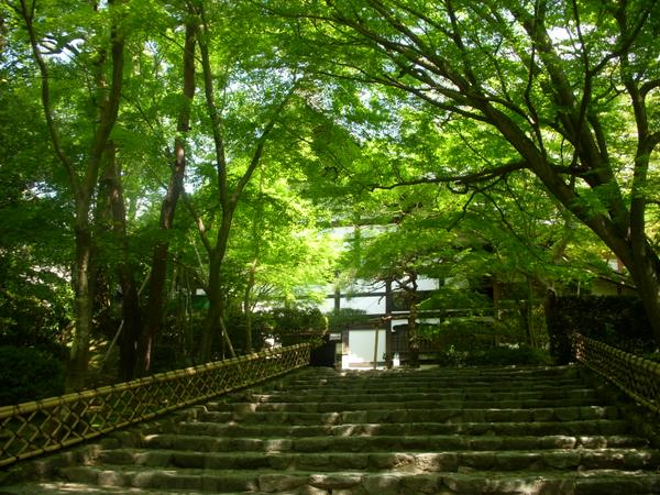 Ryoanji Temple image