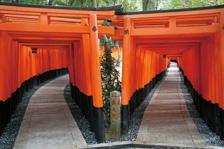 Fushimi Inari Taisha image2