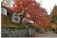 Manshuin Temple (Takenouchi Monzeki) image