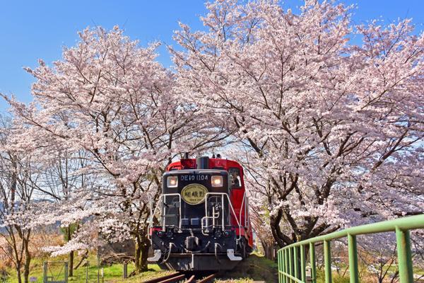 嵯峨野トロッコ列車 image