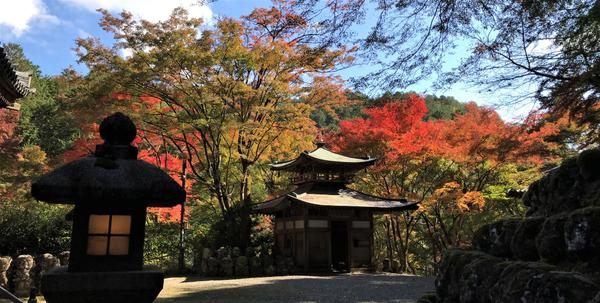 Otagi Nenbutsu-ji Temple image