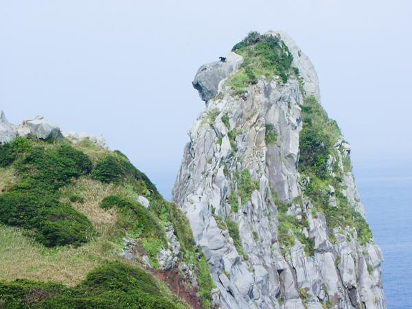 猿岩 image