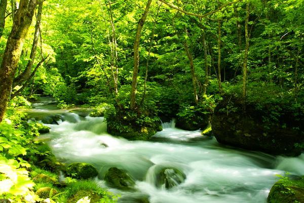 อุทยานแห่งชาติโทวาดะฮะจิมันไต image