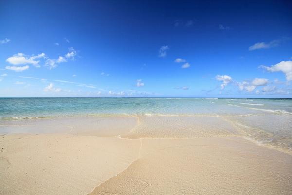奄美群島国立公園 image