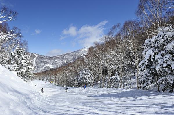 하스이케 스키장 image