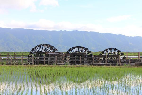 三連水車 image