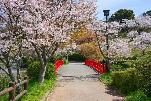 甘木公園 image