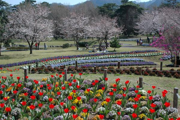 別府公園 image