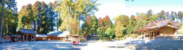 都農神社 image